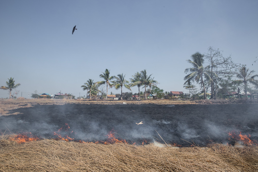 Eagle flies over burned farm land at Leang Leang, Maros regency, Makassar, Indonesia. Indonesia's national disaster management agency has declared that the majority of the country's 34 provinces are experiencing drought caused by the El Nino weather phenomenon, the worst drought in the past five years. The dry season forces villagers to walk long distances to find clean water.