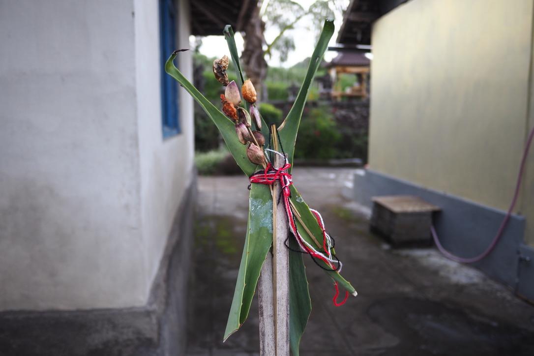 Umat Hindu Bali memasang persembahan khusus untuk menolak bala termasuk pandemi Covid-19. Foto Anton Muhajir