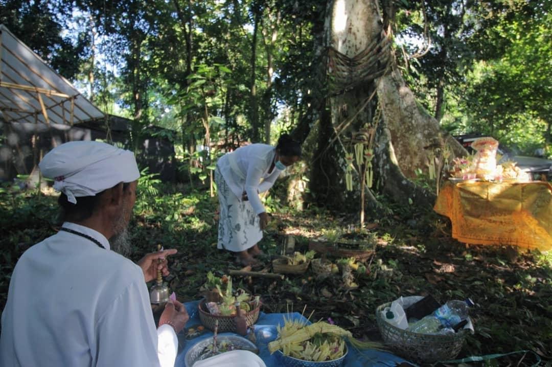 Peresmian Hutan Belajar di Jembrana dilaksanakan pada hari Tumpak Wariga.